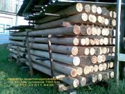 оцилинрдрованная древесина