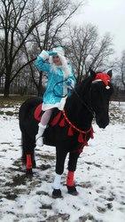 Выезд Деда Мороза и Снегурочки на дом
