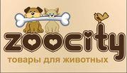 Zoocity товары для животных